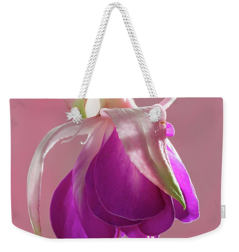 Flora Weekender Tote Bag featuring the photograph Fuschia Petals by Shirley Mitchell