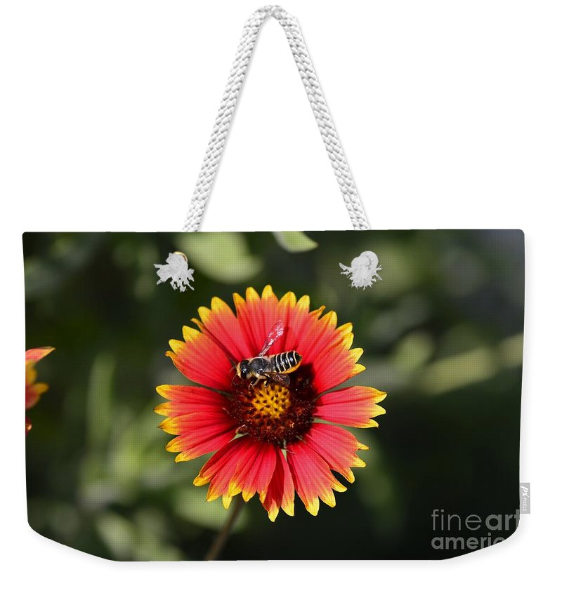 Bee Weekender Tote Bag featuring the photograph Garden Visitor by Julie Adair