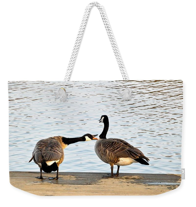 Pond Weekender Tote Bag featuring the photograph Geese by FL collection