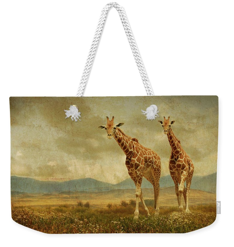 Giraffes Weekender Tote Bag featuring the photograph Giraffes In The Meadow by Guy Crittenden