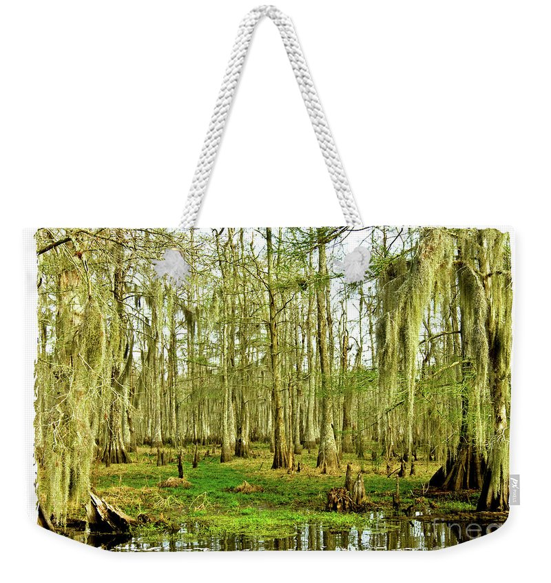 Swamp Weekender Tote Bag featuring the photograph Grand Bayou Swamp by Scott Pellegrin