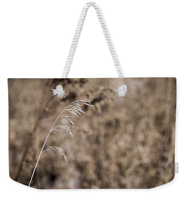 Grass Weekender Tote Bag featuring the photograph Grass Blade by Steven Ralser