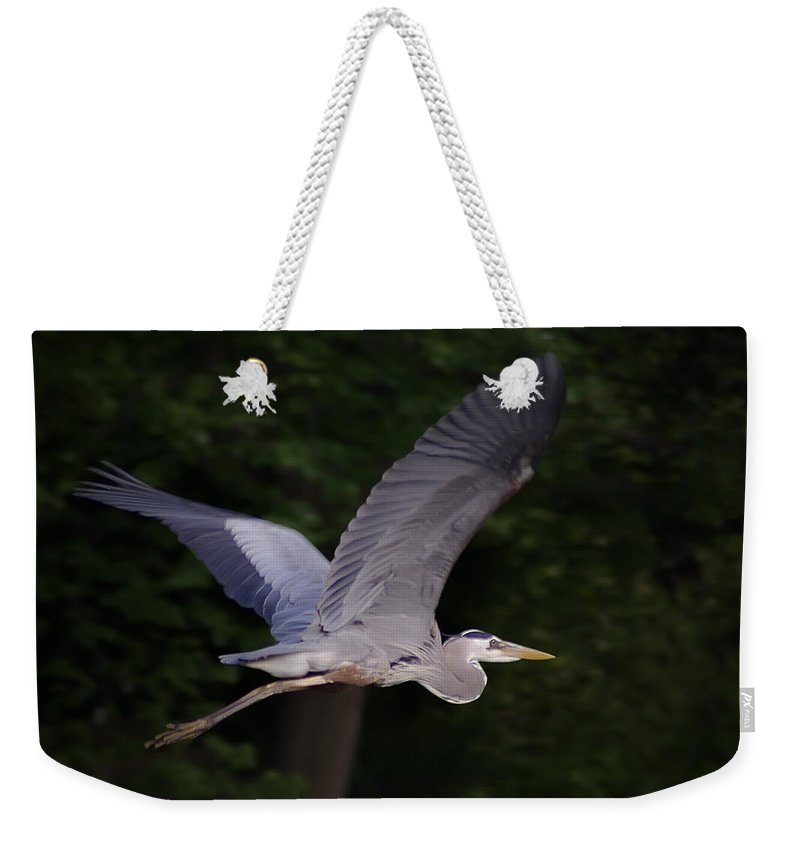 2d Weekender Tote Bag featuring the photograph Great Blue Heron In Flight by Brian Wallace