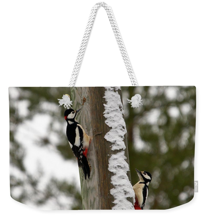 Lehtokukka Weekender Tote Bag featuring the photograph Great Spotted Woodpeckers by Jouko Lehto