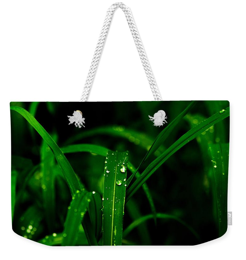 Raindrops Weekender Tote Bag featuring the photograph Green Grass by Totto Ponce