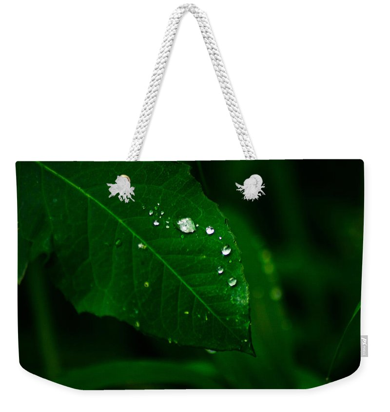 Raindrops Weekender Tote Bag featuring the photograph Green Leaf With Raindrops by Totto Ponce