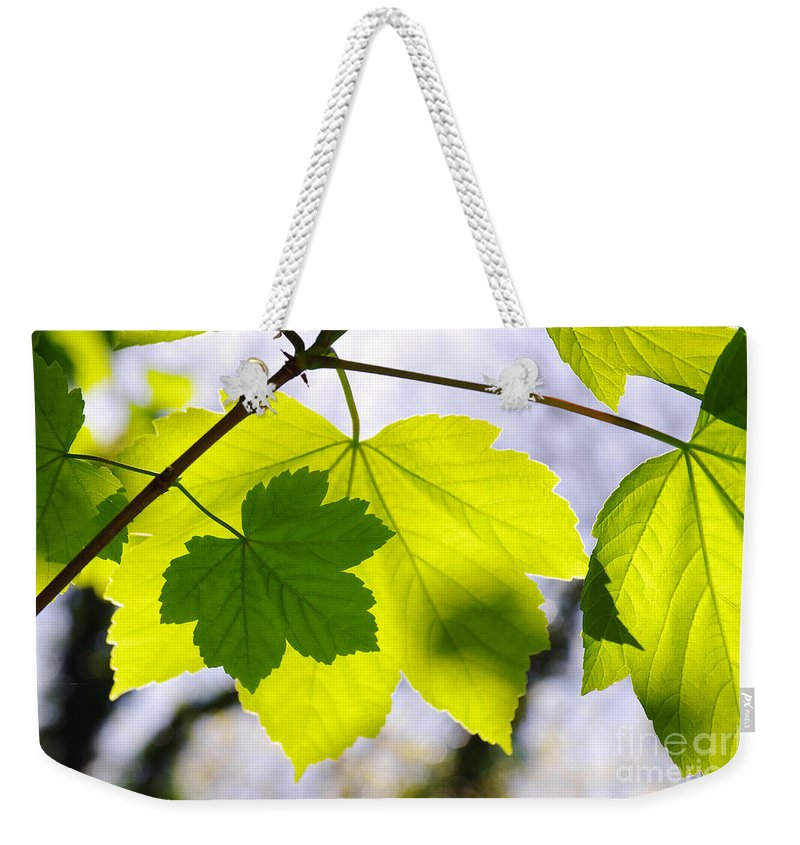 Autumn Weekender Tote Bag featuring the photograph Green Leaves by Carlos Caetano