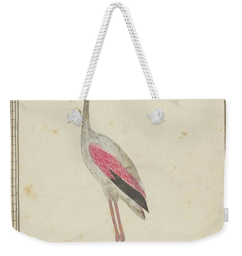 Grote Flamingo (phoenicopterus Ruber) Weekender Tote Bag featuring the painting Grote Flamingo by Robert Jacob Gordon