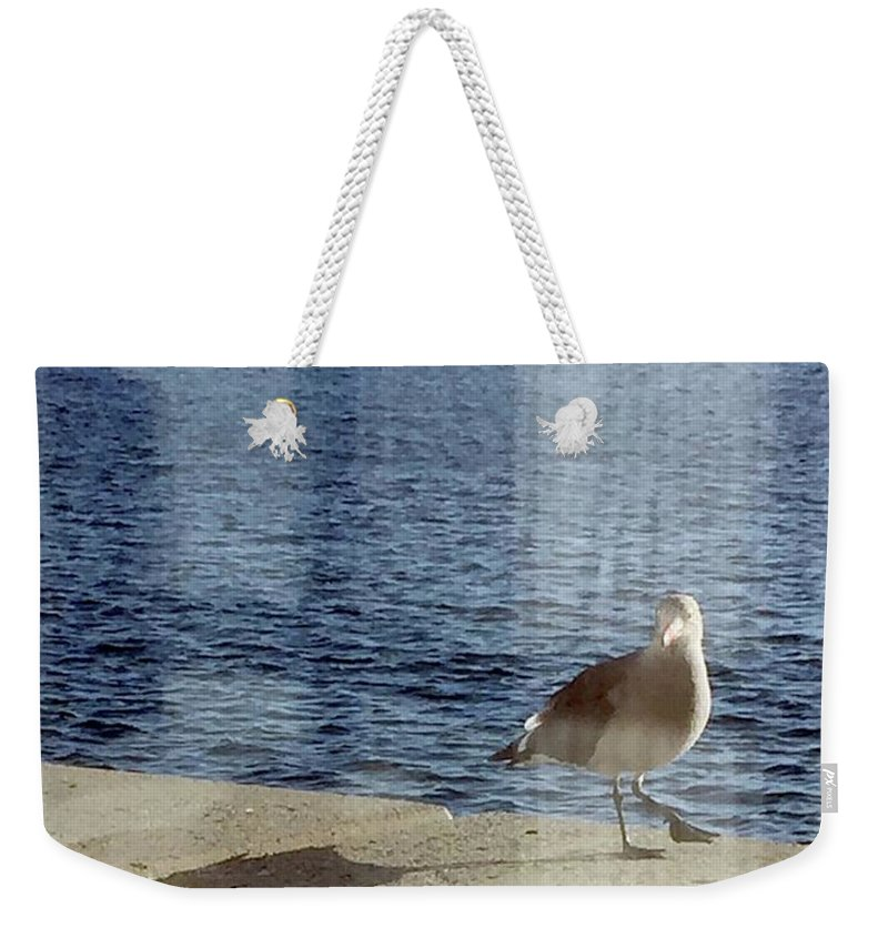 Seagull Weekender Tote Bag featuring the photograph Gull by Victoria C Clarke