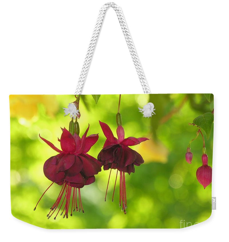 Hanging Weekender Tote Bag featuring the photograph Hanging Around by Diane Greco-Lesser