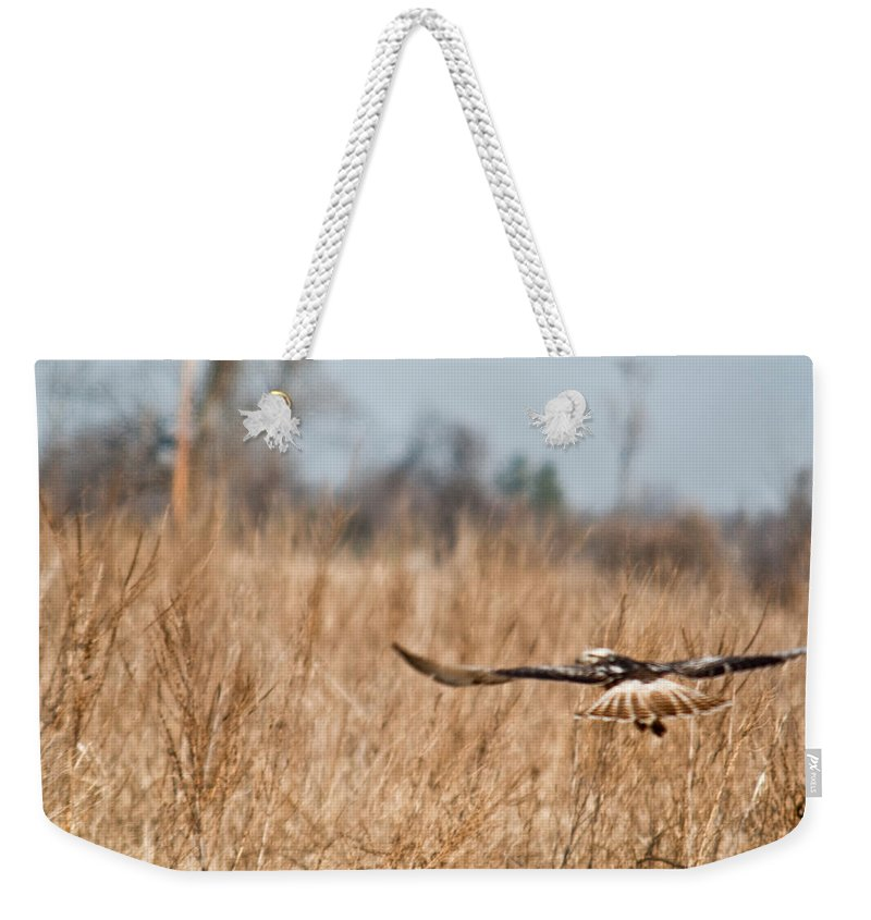 Hawk Weekender Tote Bag featuring the photograph Hawk Soaring Over Field by Douglas Barnett