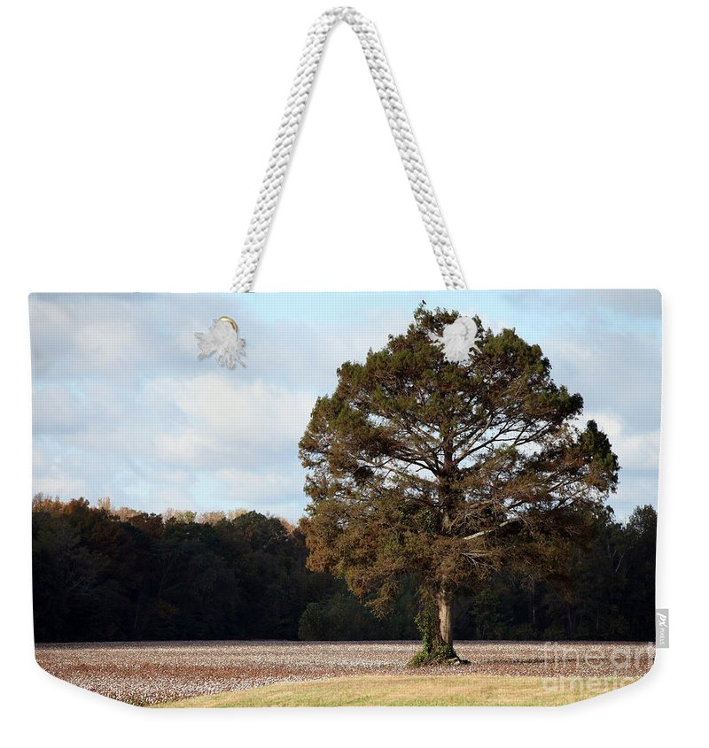 Trees Weekender Tote Bag featuring the photograph Home by Amanda Barcon