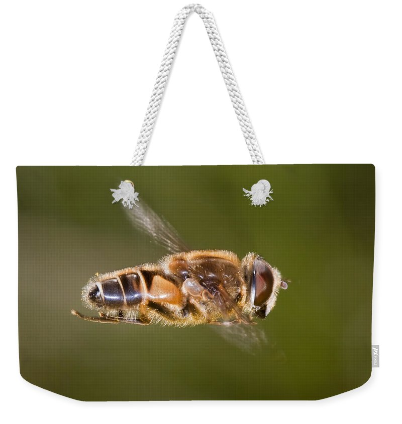 Hover Weekender Tote Bag featuring the photograph Hoverfly In Flight by Bob Kemp