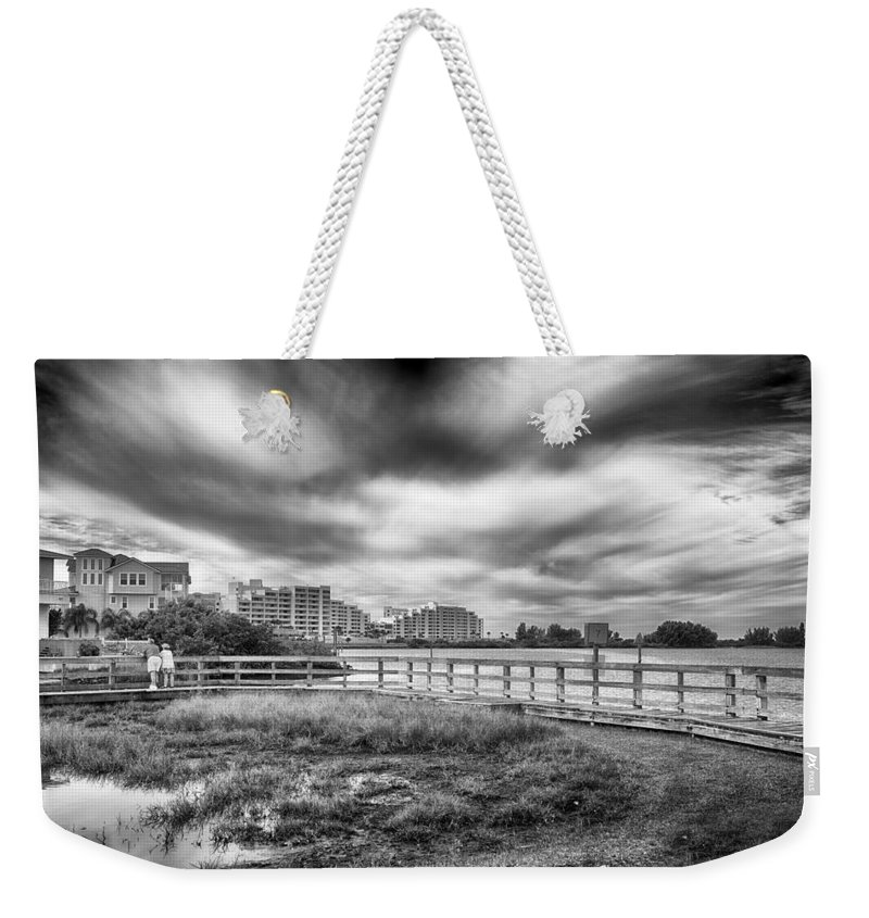 Nature Weekender Tote Bag featuring the photograph Hudson Beach by Howard Salmon