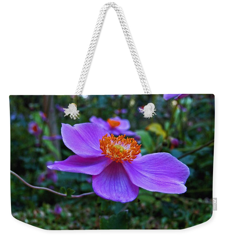 Clematis Weekender Tote Bag featuring the photograph Imminent Delight by Michiale Schneider