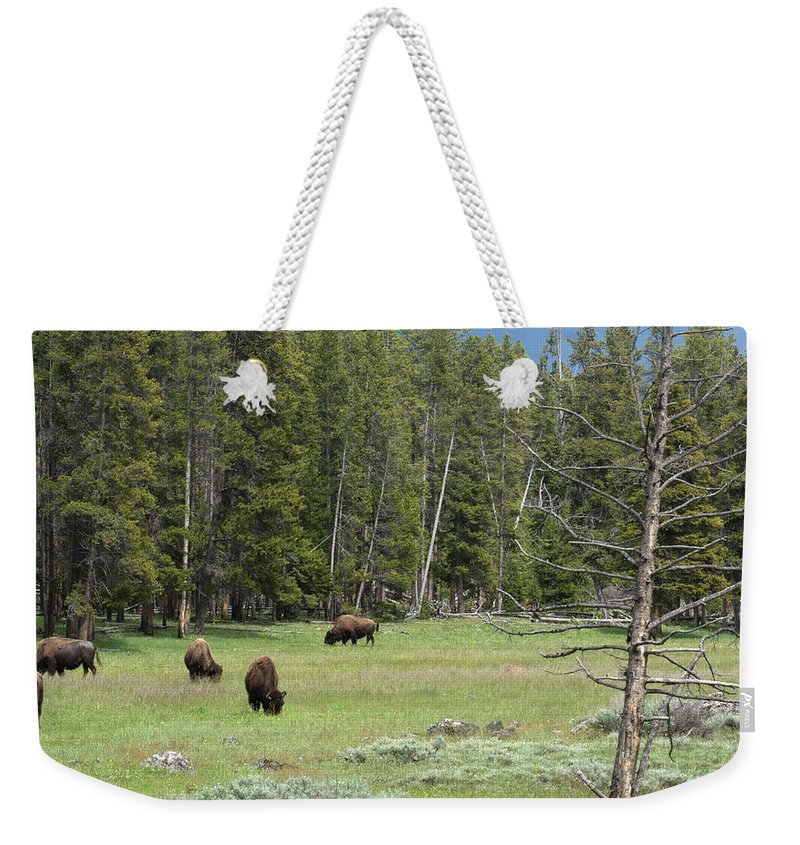 Yellowstone National Park Weekender Tote Bag featuring the photograph In A Field by Linda Kerkau
