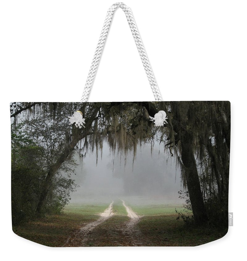 Nature Weekender Tote Bag featuring the photograph Into The Light by Peg Urban