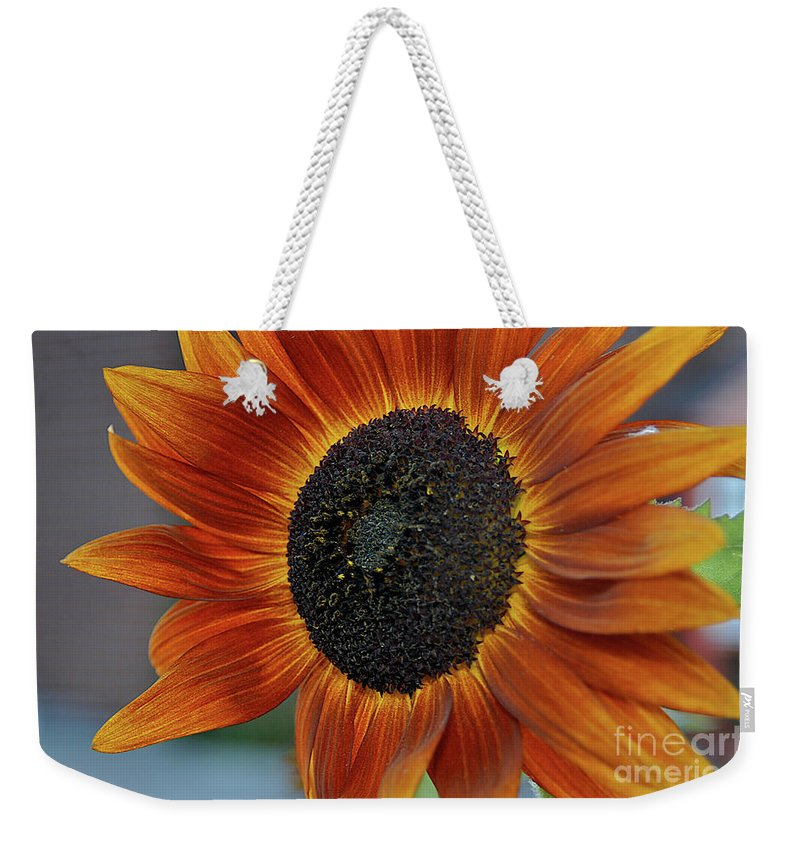 Flowers Weekender Tote Bag featuring the photograph Isabella Sun by Joseph Yarbrough