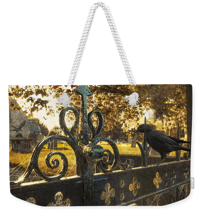 Cemetery Weekender Tote Bag featuring the photograph Jackdaw On Church Gates by Amanda Elwell