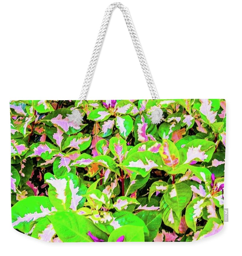 Tropical Weekender Tote Bag featuring the photograph Jamaican Croton by Louie Navoni