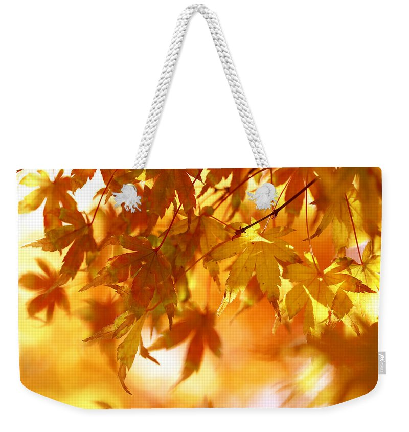 Leaves Weekender Tote Bag featuring the photograph Japanese Maple In Fall by Vanessa Thomas