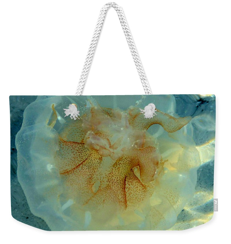 Jellyfish Weekender Tote Bag featuring the photograph Jellyfish by David Lee Thompson