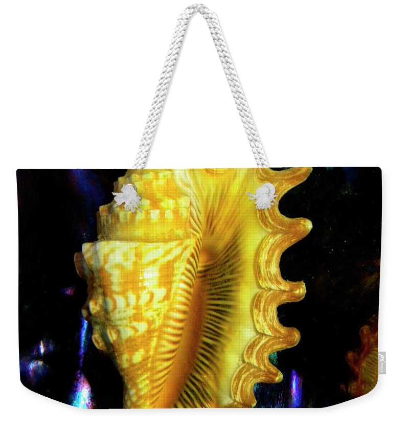 Frank Wilson Weekender Tote Bag featuring the photograph Lambis Digitata Seashell by Frank Wilson