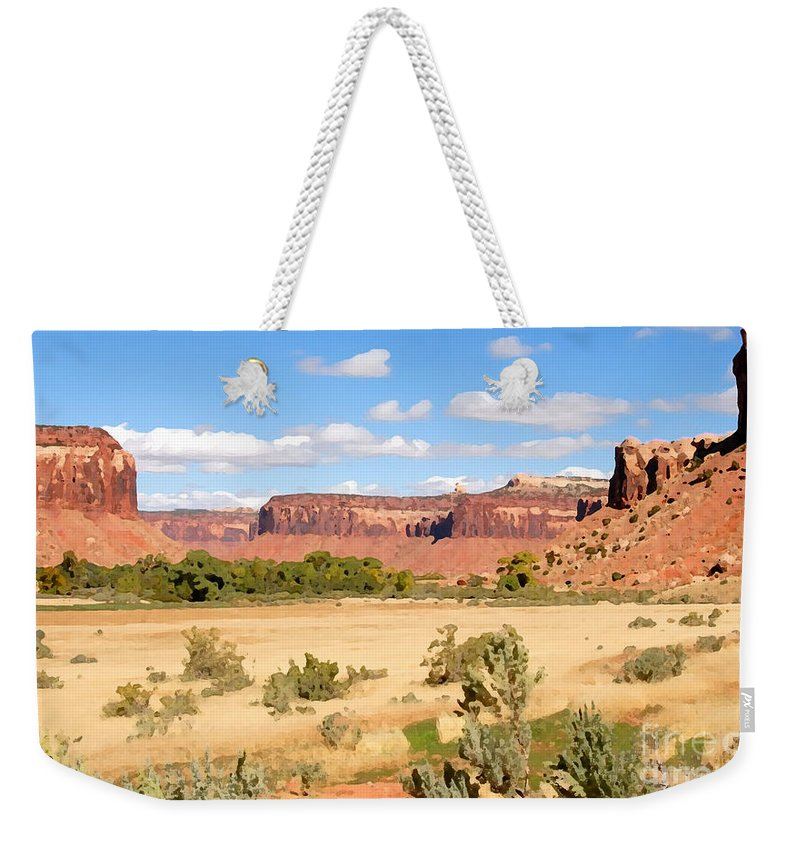 Canyon Lands Weekender Tote Bag featuring the photograph Land Of Canyons by David Lee Thompson