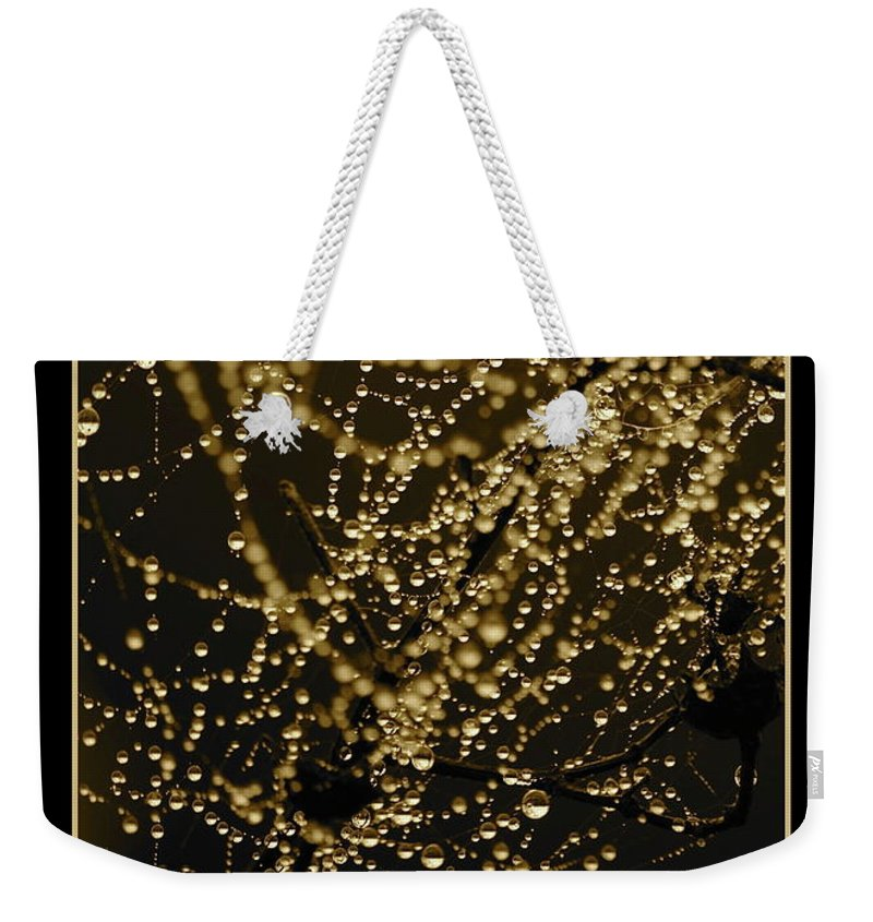Black And Gold Weekender Tote Bag featuring the photograph Let Your Light Shine by Carol Groenen