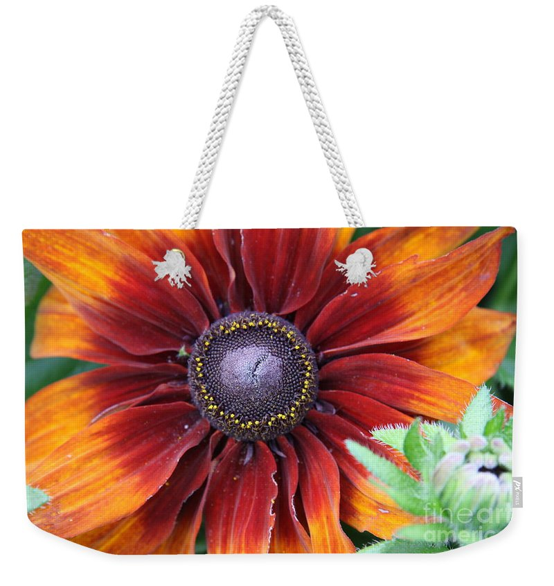 Sunflower Weekender Tote Bag featuring the photograph Little Sunshine by Christiane Schulze Art And Photography