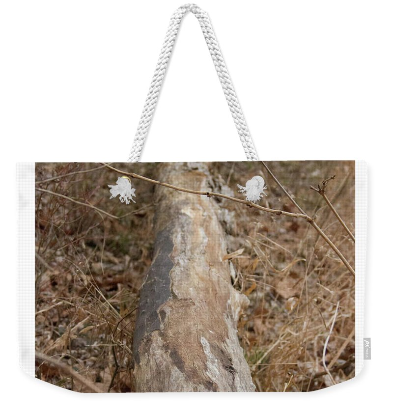 Log Weekender Tote Bag featuring the photograph Log In The Woods by Rebecca Pavelka