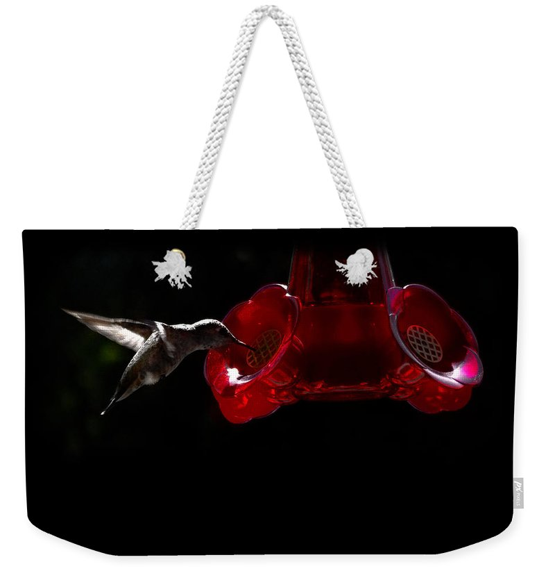 Hummingbird Weekender Tote Bag featuring the photograph Midnight Snack by Gravityx9 Designs