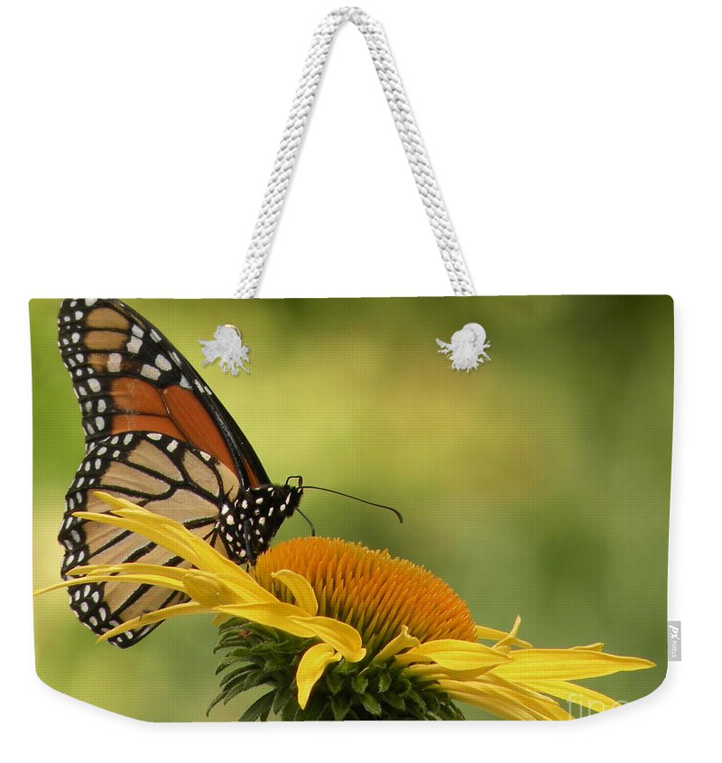Monarch Weekender Tote Bag featuring the photograph Monarch Butterfly by Joanne Young
