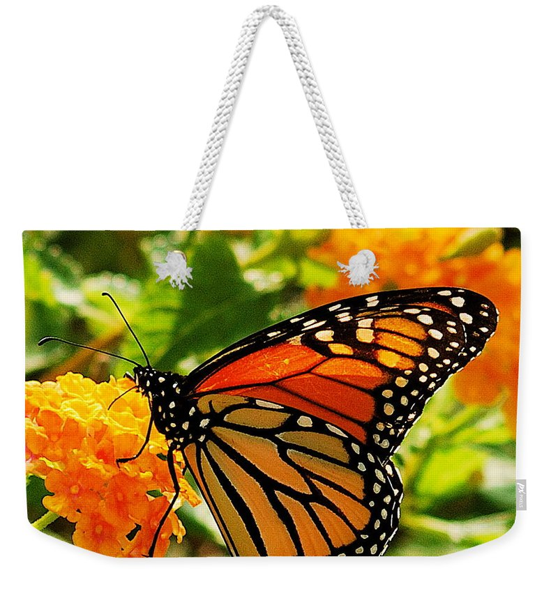 Buterfly Weekender Tote Bag featuring the photograph Monarch by Michael Peychich