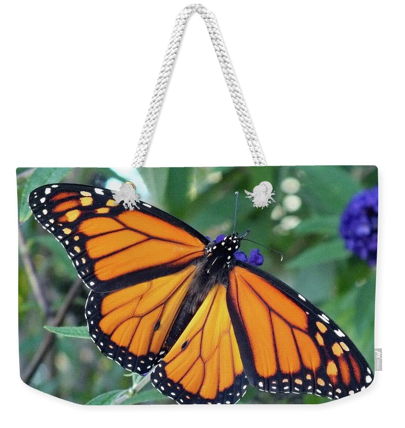 Monarch Weekender Tote Bag featuring the photograph Monarch - Perfection by Cindy Treger