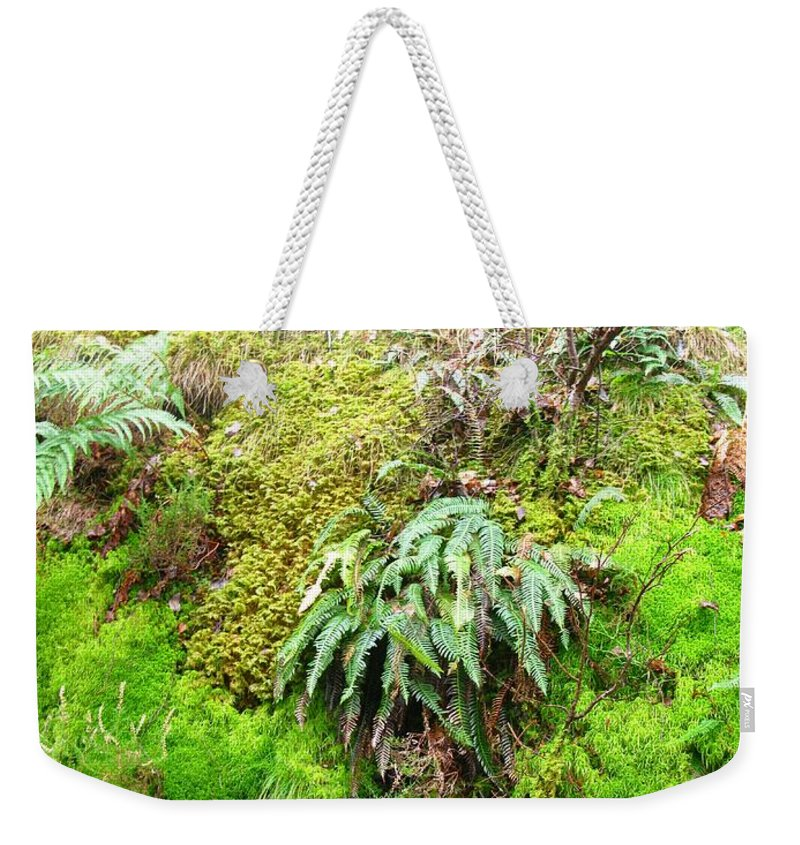 Scotland Weekender Tote Bag featuring the photograph Mossy by Maria Joy