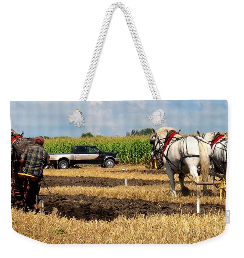 Horses Weekender Tote Bag featuring the photograph Neck And Neck by Ian MacDonald
