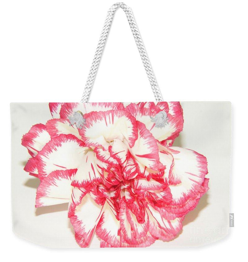 Flowers Weekender Tote Bag featuring the photograph Nice Carnation by Elvira Ladocki