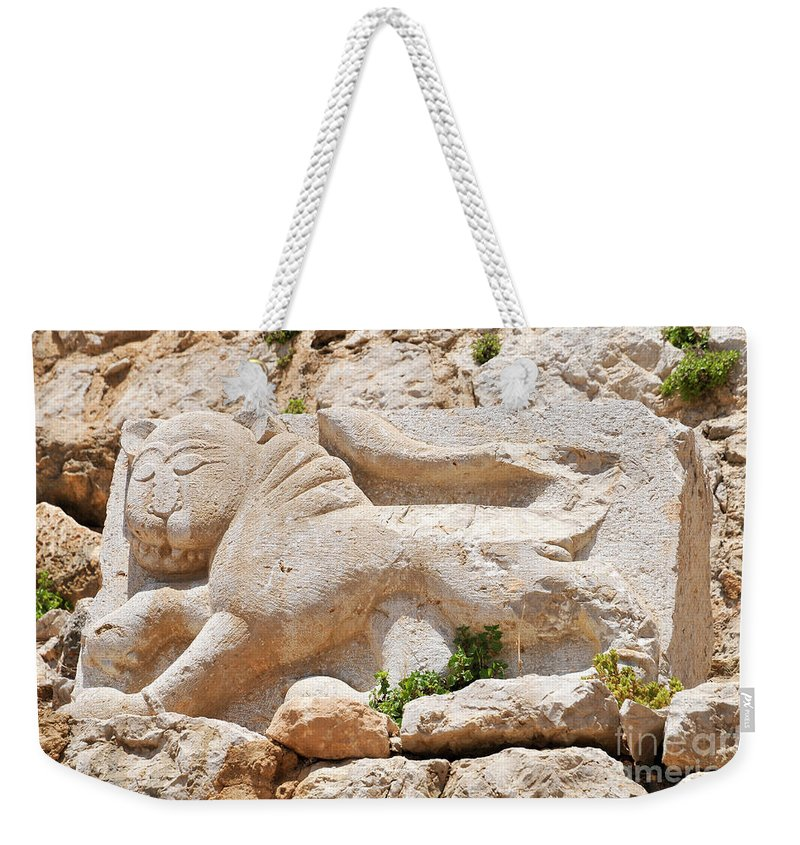 Lion Weekender Tote Bag featuring the photograph Nimrod Fortress National Park by Shay Levy