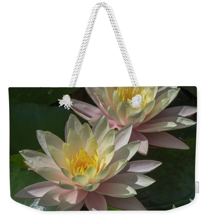 Flower Weekender Tote Bag featuring the photograph Nymphaea by Bruce Frye