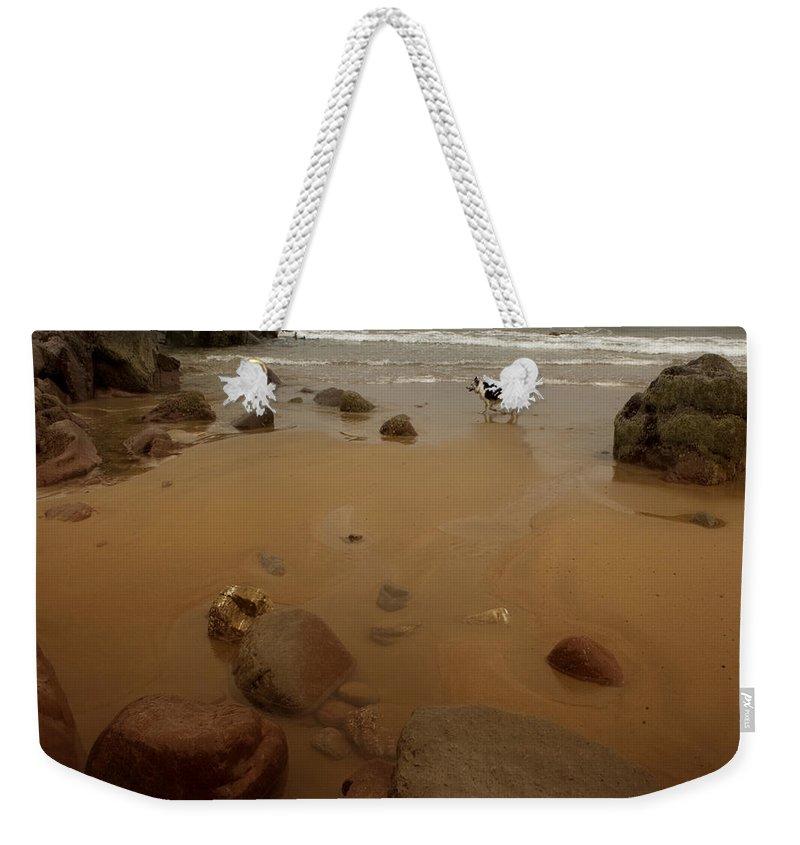 Beach Weekender Tote Bag featuring the photograph On The Beach by Angel Ciesniarska