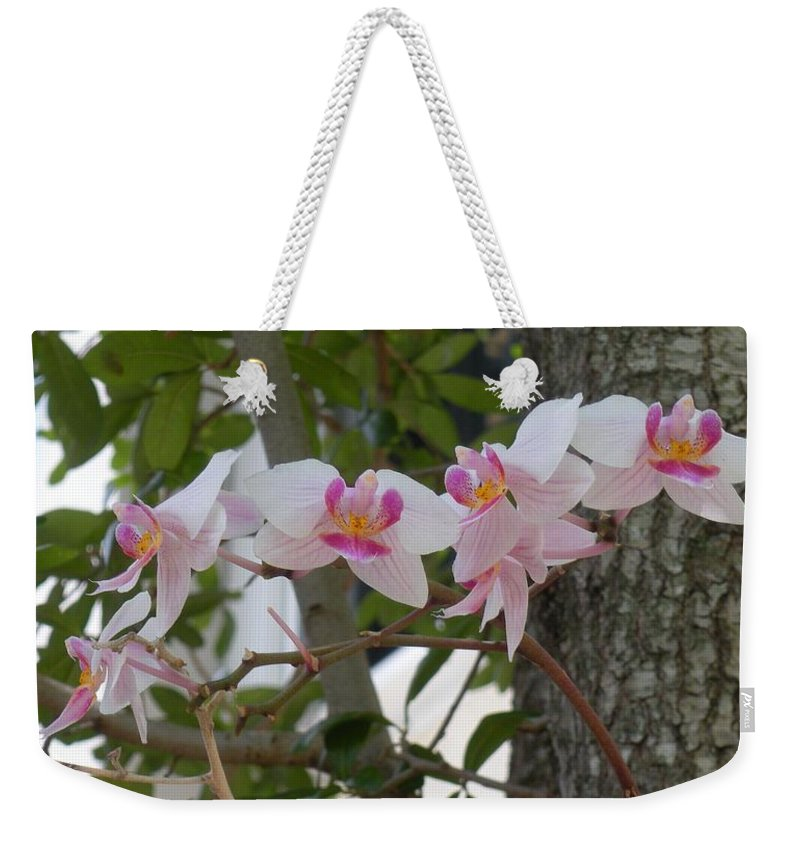 Weekender Tote Bag featuring the photograph Orchid Bunch by Maria Bonnier-Perez