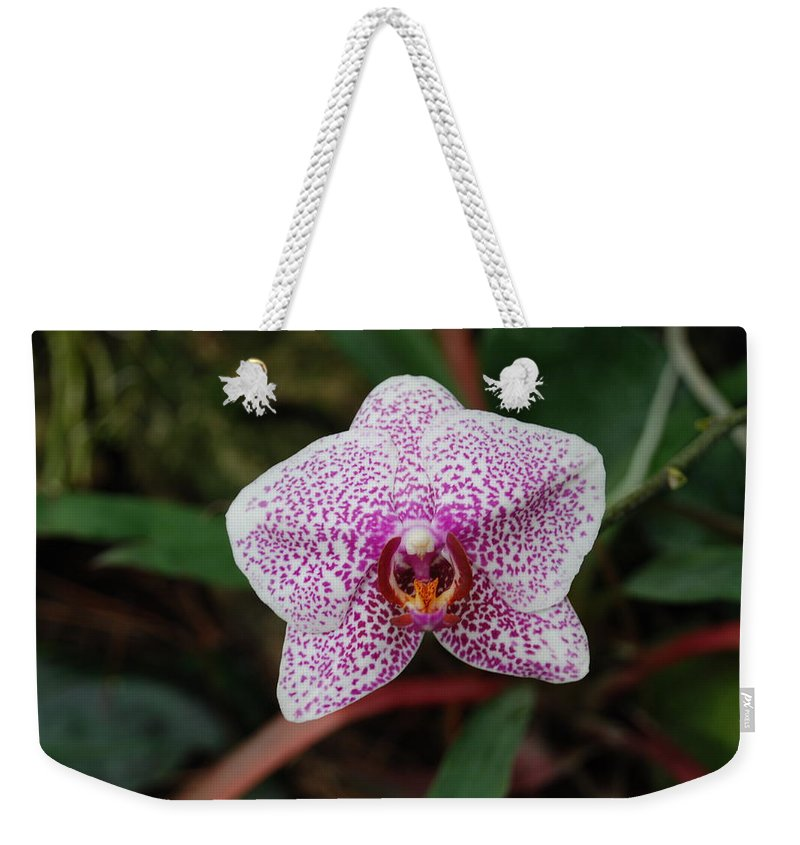 Pink Weekender Tote Bag featuring the photograph Orchid by Rob Hans