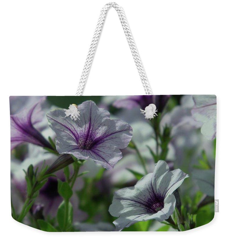 Flowers Weekender Tote Bag featuring the photograph Pansies by Jeff Swan