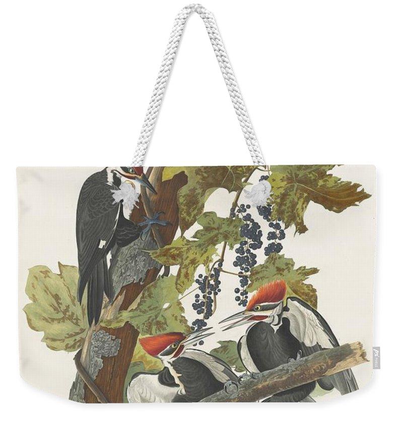 Woodpecker Weekender Tote Bags