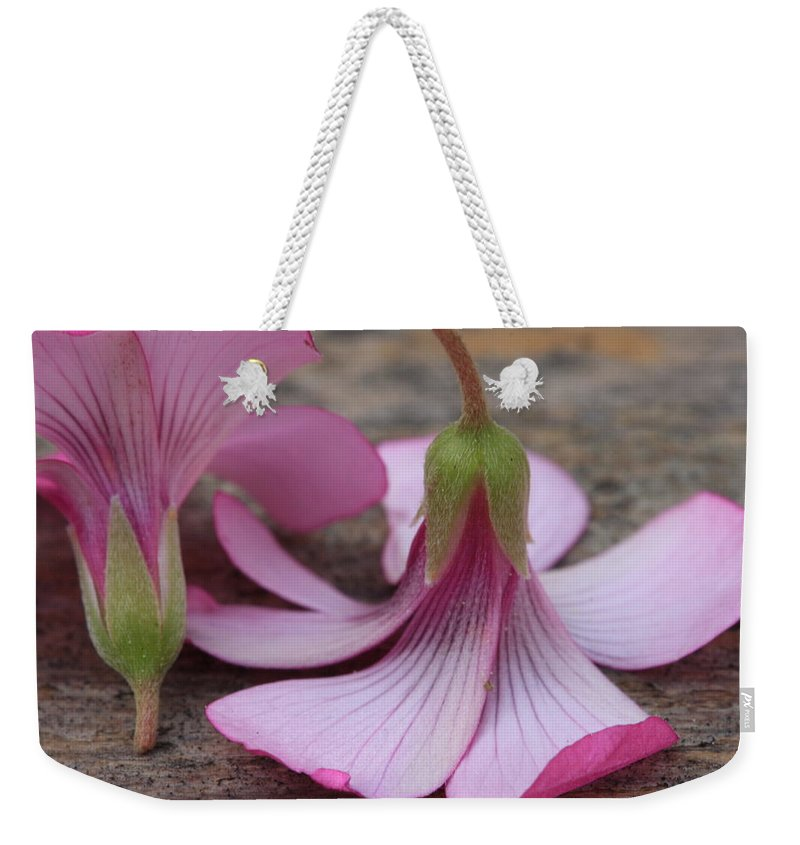 Flower Weekender Tote Bag featuring the photograph Pink Flower by Kim Henderson