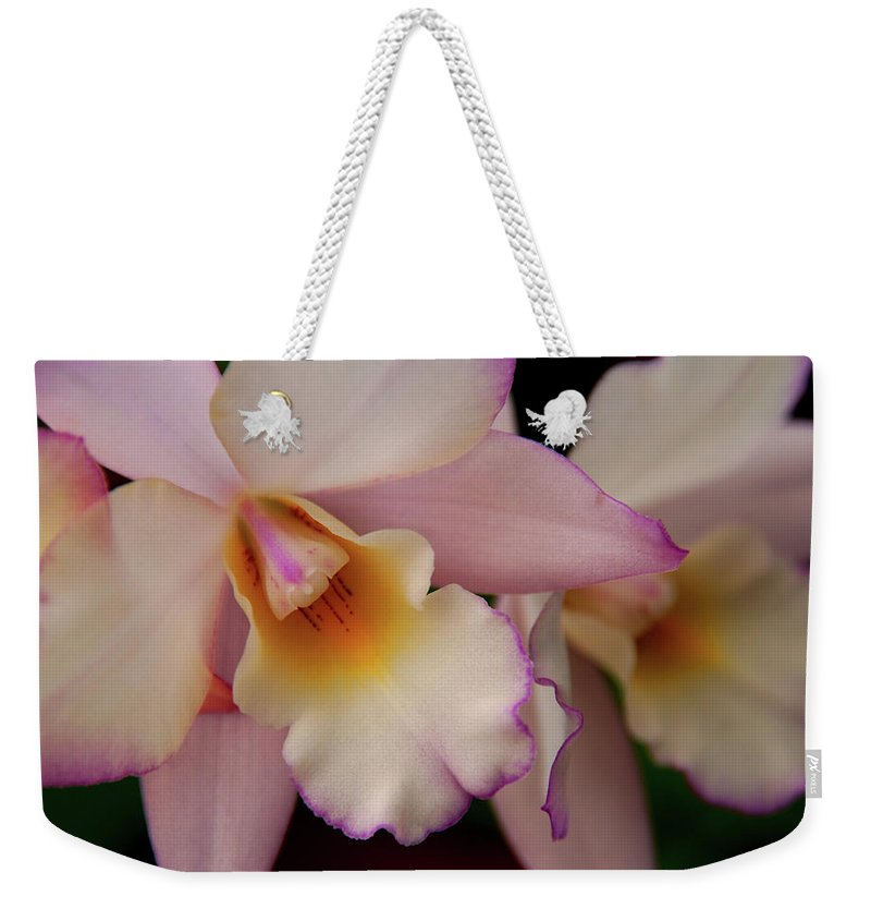 Orchids Weekender Tote Bag featuring the photograph Pinky Pink by Susanne Van Hulst
