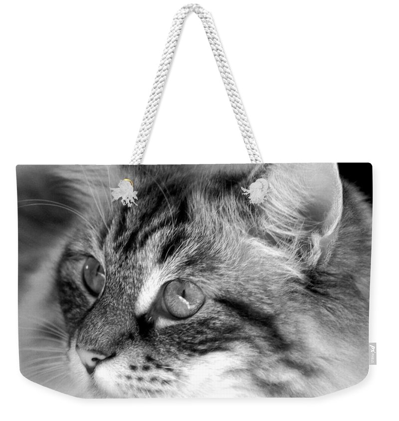Clay Weekender Tote Bag featuring the photograph Polly by Clayton Bruster