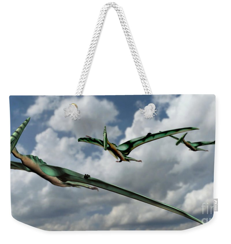 Pterodactyl Weekender Tote Bag featuring the photograph Pterodactyls In Flight by Spencer Sutton