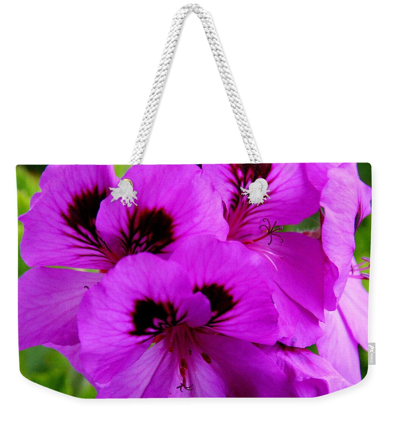 Purple Flowers Weekender Tote Bag featuring the photograph Purple Flowers by Anthony Jones